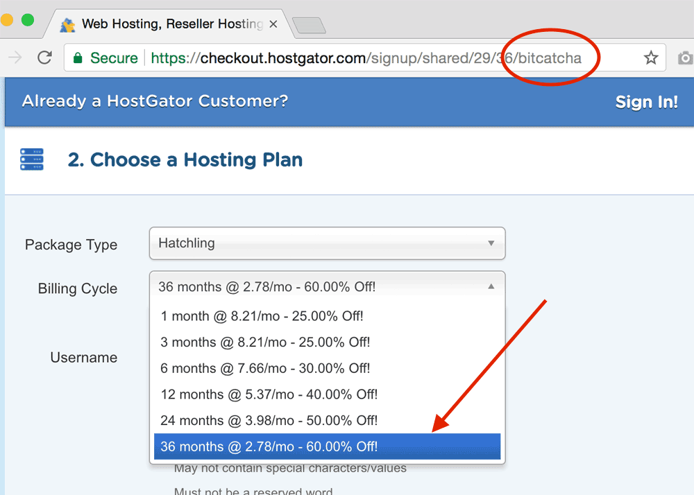 60% off HostGator hosting