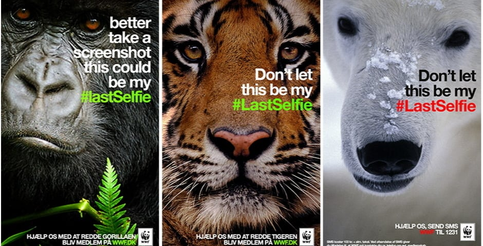 WWF Snapchat #LastSelfie Campaign