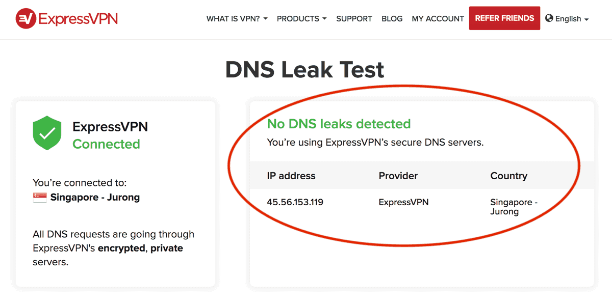 DNS-Leaks Proof